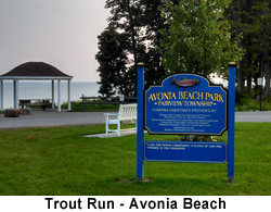 Trout Run Avonia Beach